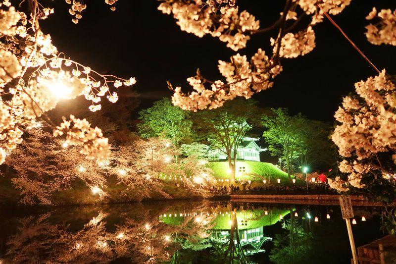 ライトアップ夜景遺産認定!新潟 高田城へ夜桜を見に行こう!オススメ時間帯は?