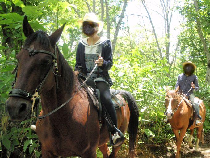 林の中を馬に乗って、てくてく散歩!!