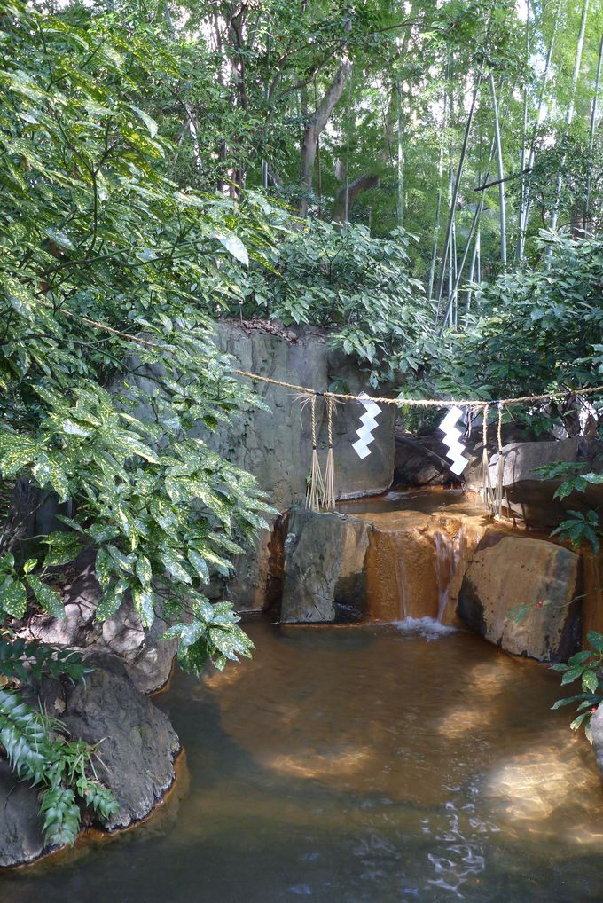水みくじを浸す池