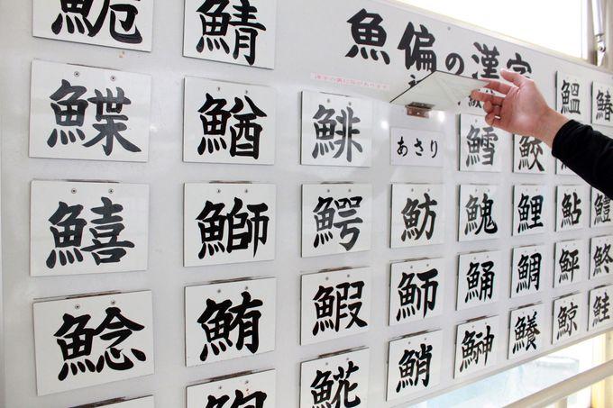 いくつ正解できる?魚辺の漢字あてクイズ!