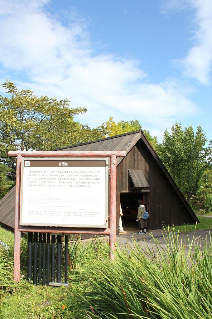 広大な敷地の自然を満喫。見応えある再現展示物を散策