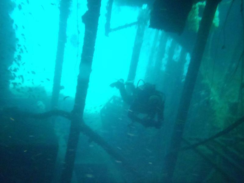 熱海で沈船ダイビング!噴火口跡や洞窟も!関東から近く温泉も楽しめる