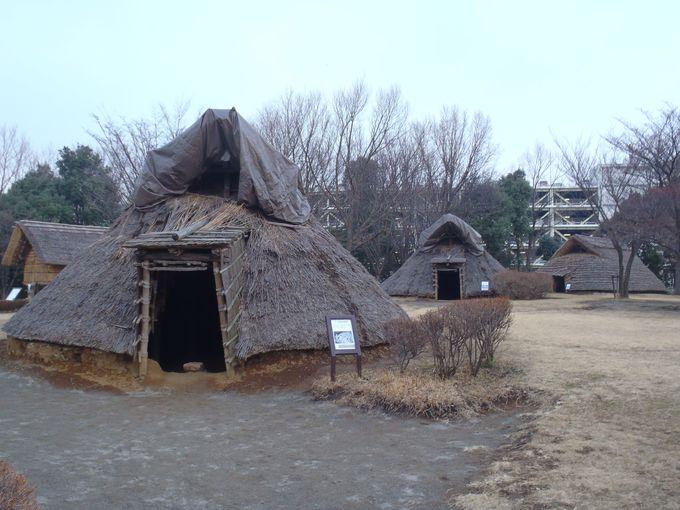 弥生時代の環濠集落跡、大塚遺跡