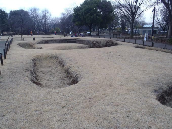 大塚遺跡に隣接する、歳勝土(さいかちど)遺跡