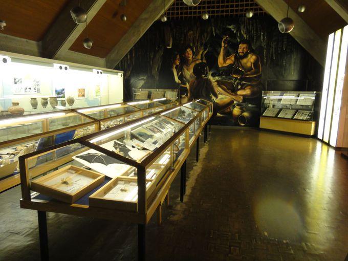 貴重な資料の数々が展示されている「龍河洞博物館」