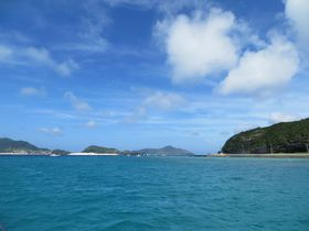 沖縄でのダイビングデビューは、安全で見どころも多い慶良間がオススメ!