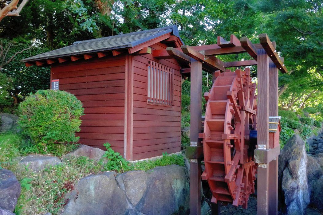 林業試験場の趣が残る「林試の森公園」〜目黒区・武蔵小山駅〜