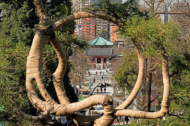 比叡山へのこだわり「清水観音堂」