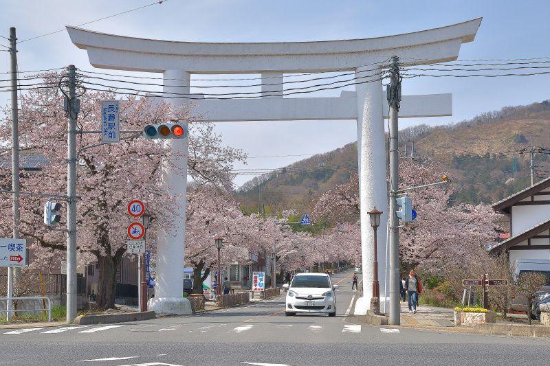 メインストリート「宝登山神社参道」で春を楽しもう