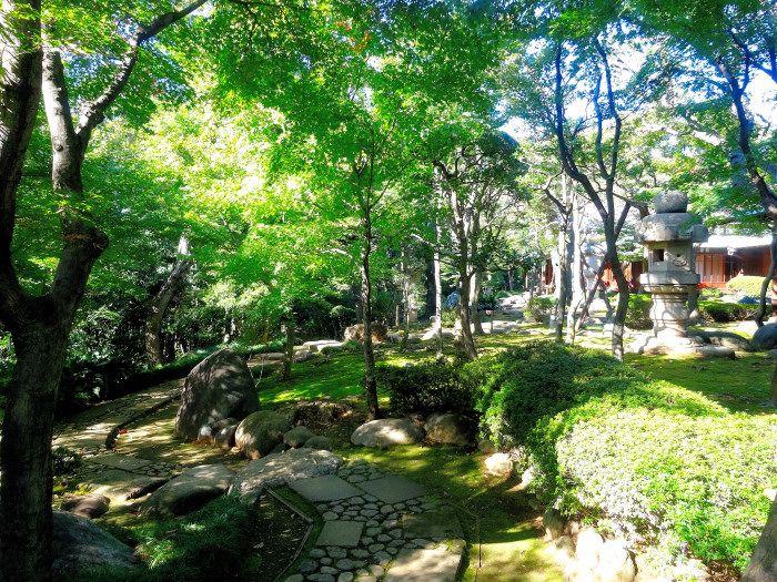 緑濃い洒落た和風庭園