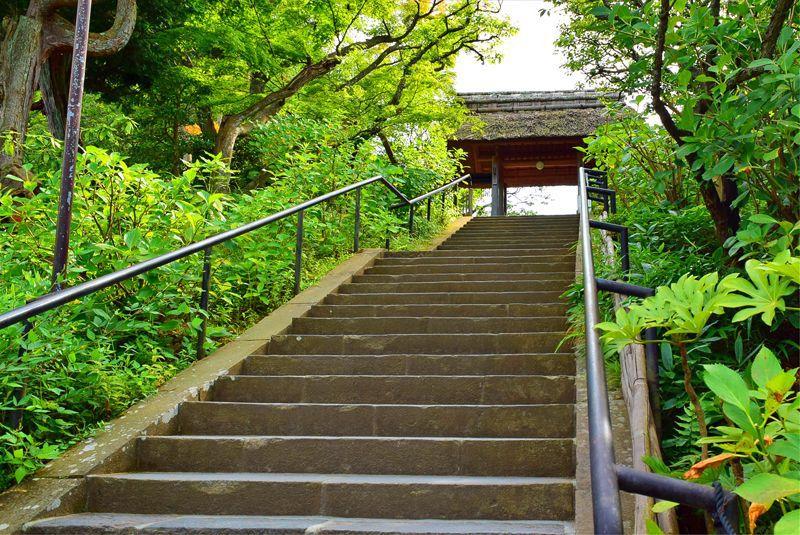 ミシュラン3つ星の縁切寺!フランス人が愛する鎌倉・東慶寺の魅力を探る