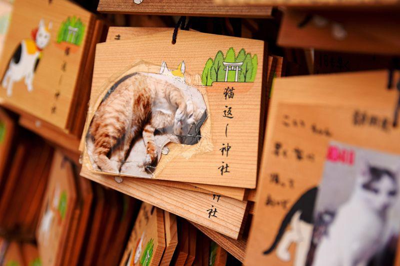 猫を無事を祈願する『猫返し神社』
