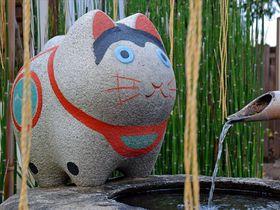 ワンニャンがラブリー!立川市・阿豆佐味天神社はペット神社