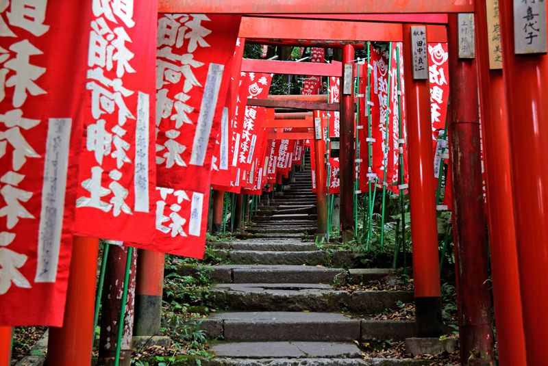 【1日目:午後】佐助稲荷神社
