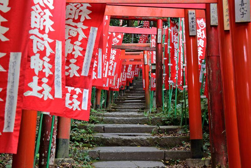 出世運・仕事運に効く佐助稲荷神社