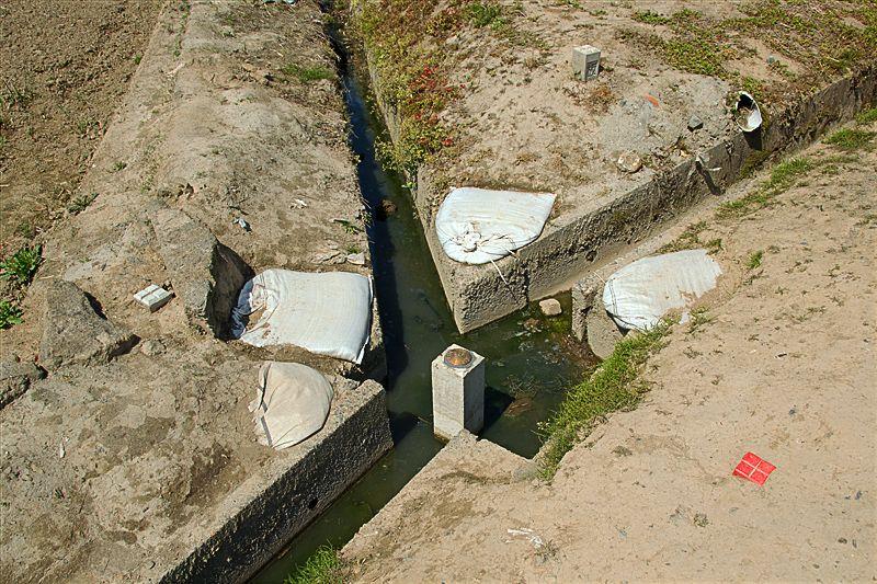 サンダルで三県ひとまたぎ!栃木市「渡良瀬遊水地」のややこしい県境