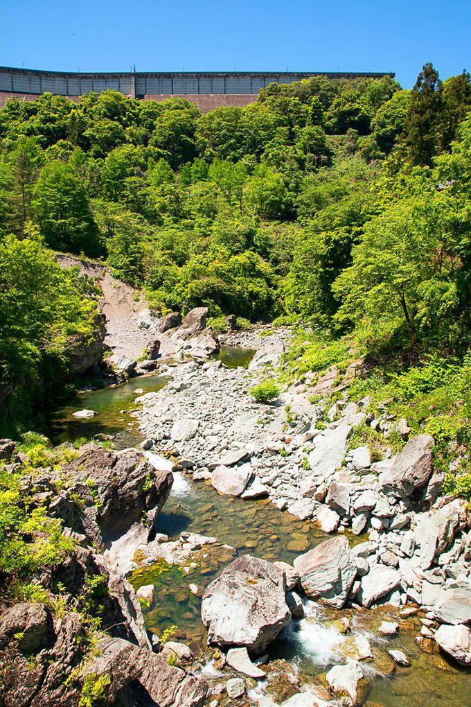自然環境を蘇らせる「放流水」