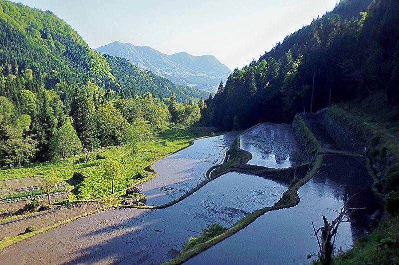 自然溢れる温泉公園