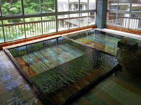 黄金色の湯の花が舞う山梨県「元湯 蓬莱館」はアットホームな秘湯