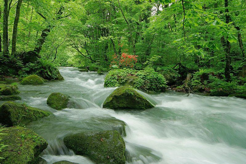 水と岩の織りなす景観美「奥入瀬渓流」とは