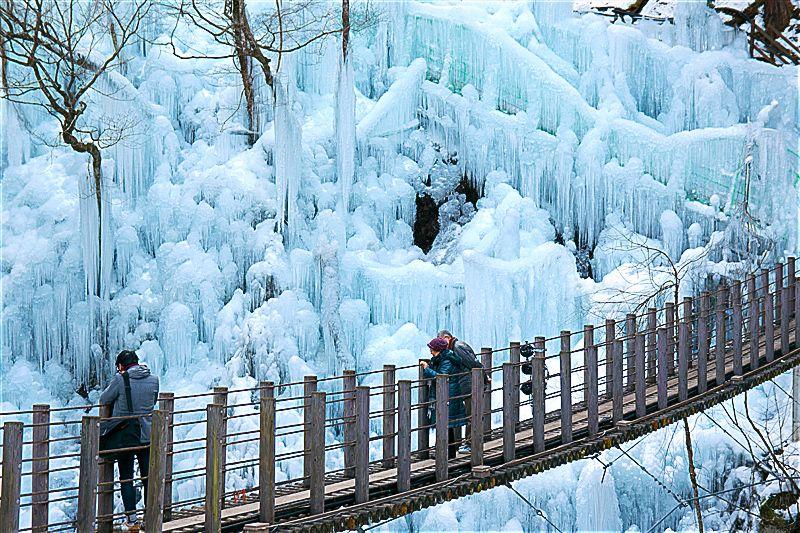 尾ノ内百景氷柱の見所