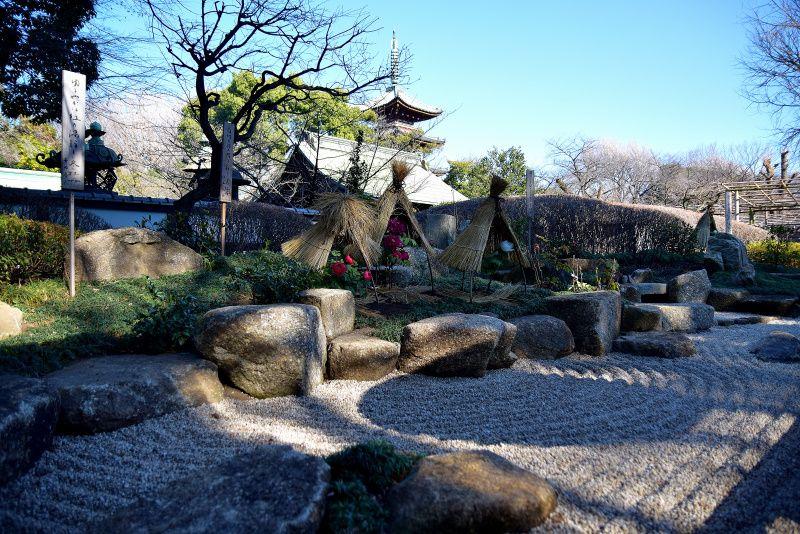 上野東照宮ぼたん苑