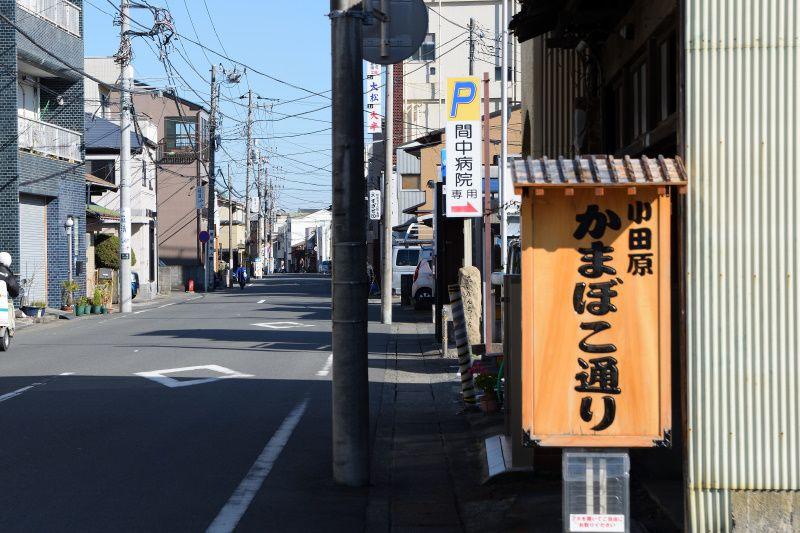 蒲鉾が支える小田原の食文化「かまぼこ通り」