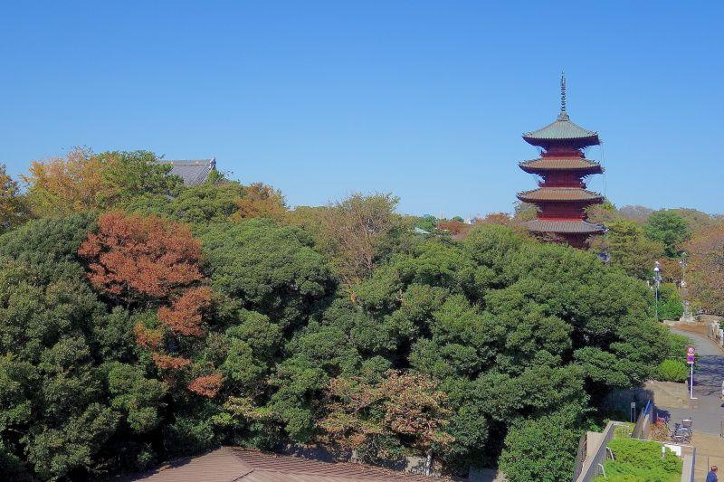 西郷隆盛と勝海舟!東京・池上線で行く歴史浪漫と食べ歩きグルメ