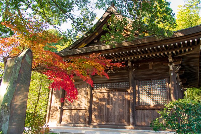 紅葉の映える寺院