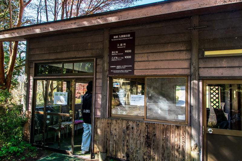 箱根九頭龍の森で癒しの散策