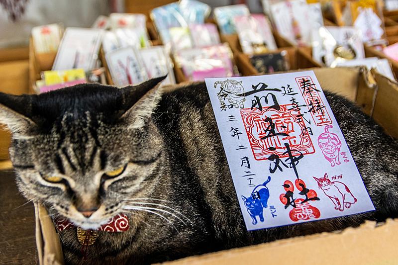 きなこデラックス!?行田市「前玉神社」でニャンニャンのご朱印