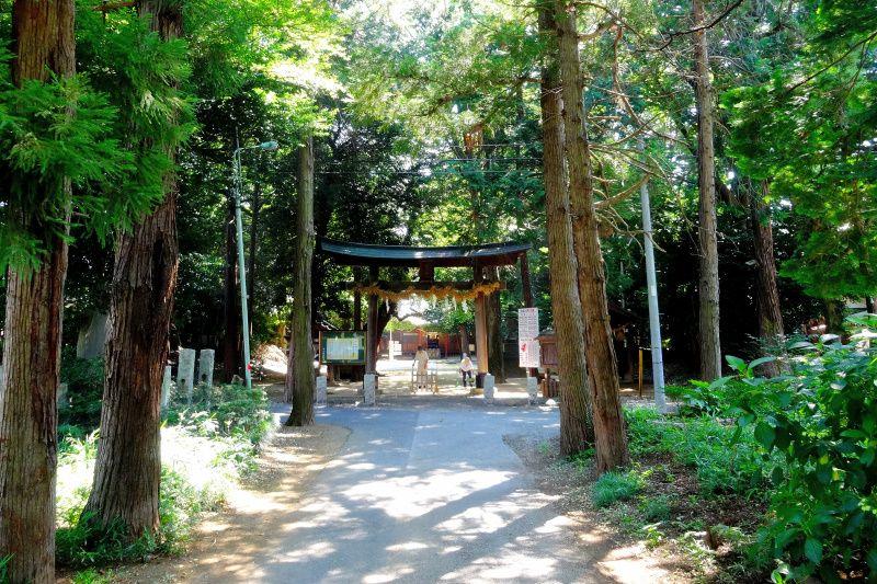 龍神伝説の継承「中山神社」