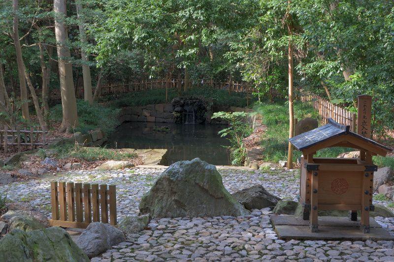 龍神伝説の源「大宮氷川神社」