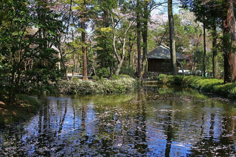 東京近郊で再発見!名刹・平林寺に残る「武蔵野」の面影