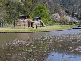 山形県高畠町〜縄文遺跡と鉄道廃線跡に歴史を刻む「まほろばの里」