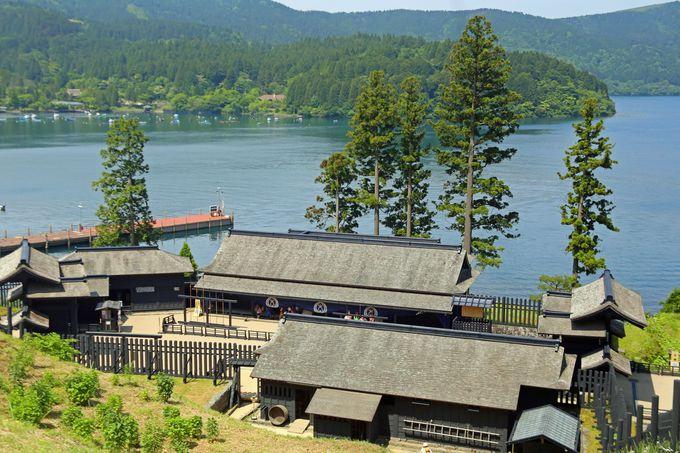 箱根の自然に触れ、長い歴史に思いを馳せよう