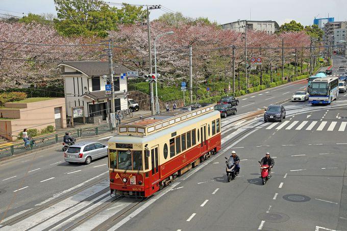 日本最初の公園となった「飛鳥山公園」
