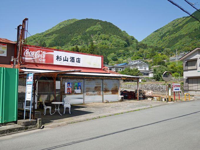 小田原から電車、バスを乗り継いて登山口に