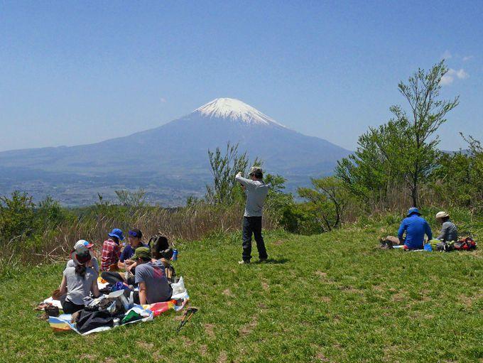 頂上では富士山の姿を存分に楽しめます