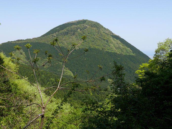 独特の山の姿も魅力の一つ
