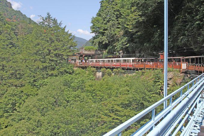 列車はカーブを繰り返して、深い山に分け入って行きます