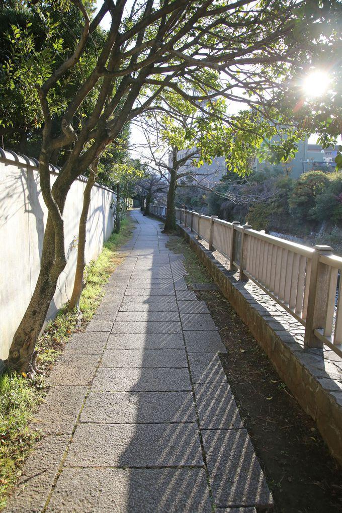 伊東の歴史を学べる「松川遊歩道」