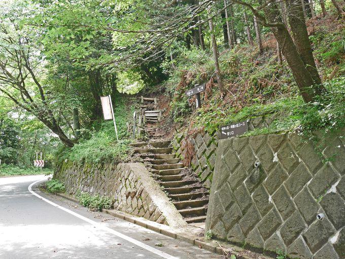 登るごとに展望が開ける登山道