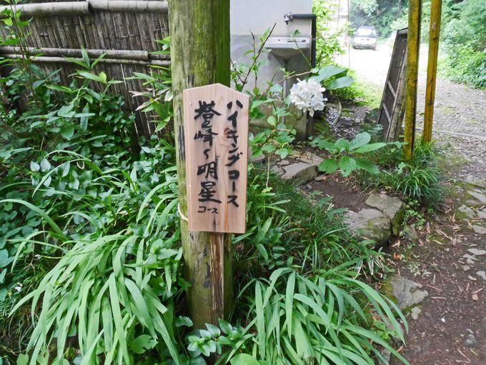 阿弥陀寺の裏手から登山道が始まります