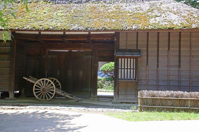 江戸時代の人々の暮らしに思いを馳せよう