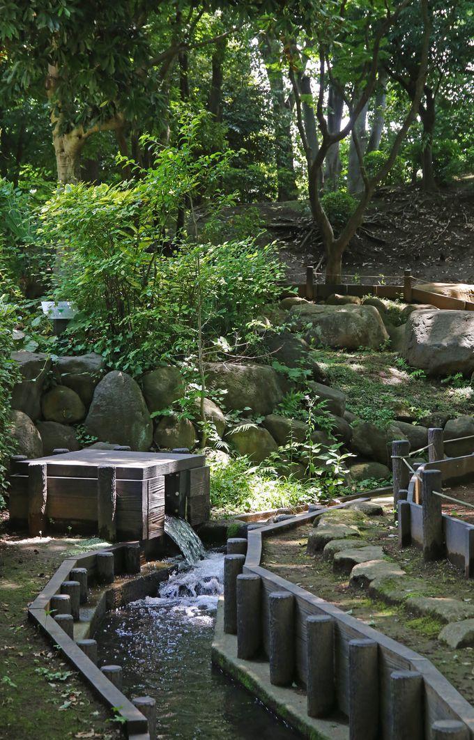 住宅街の中にある瀟洒な自然公園