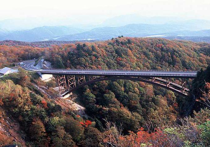 震災後も自然の美しさは変わらず、「通行無料」で観光客も増加傾向♪