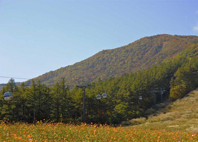 「安達太良山」は日本最古の「万葉集」でもその美しさが詠われる!!