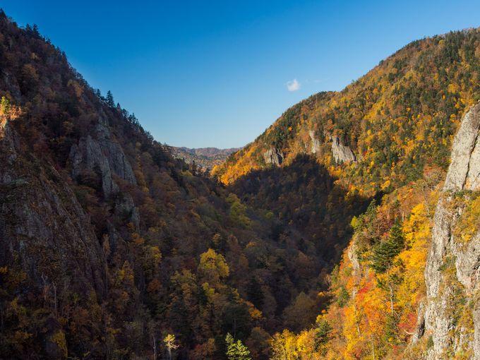 「水源の森百選」と「ダム湖百選」に選ばれた景観スポット