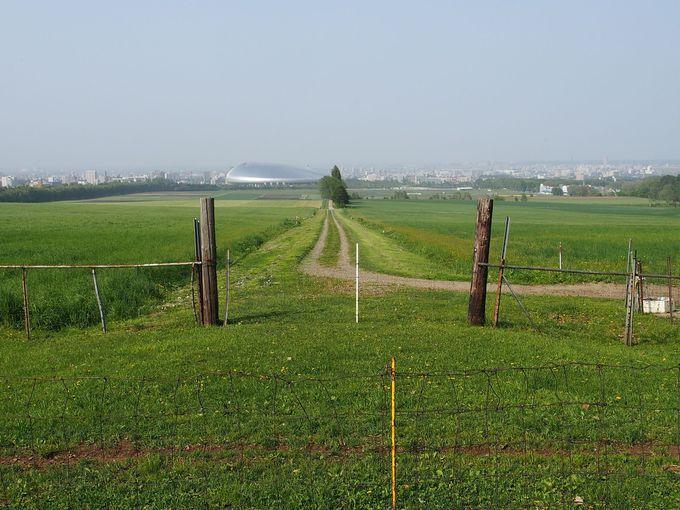 のどかな牧草地、その先に札幌ドームが見られる「羊ヶ丘展望台」
